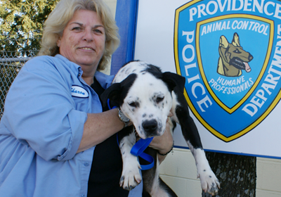 Providence Animal Control