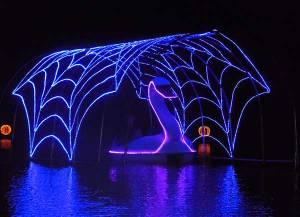 Illuminated swan boat rides
