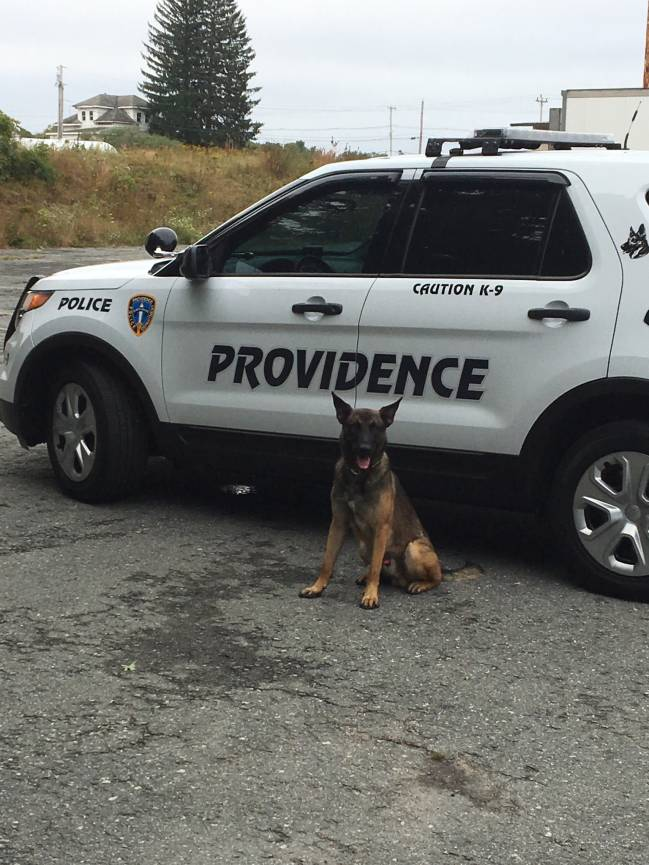 Providence Police K9's make narcotics and firearm apprehensions throughout the month of November