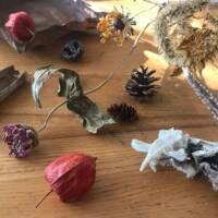 natural items2